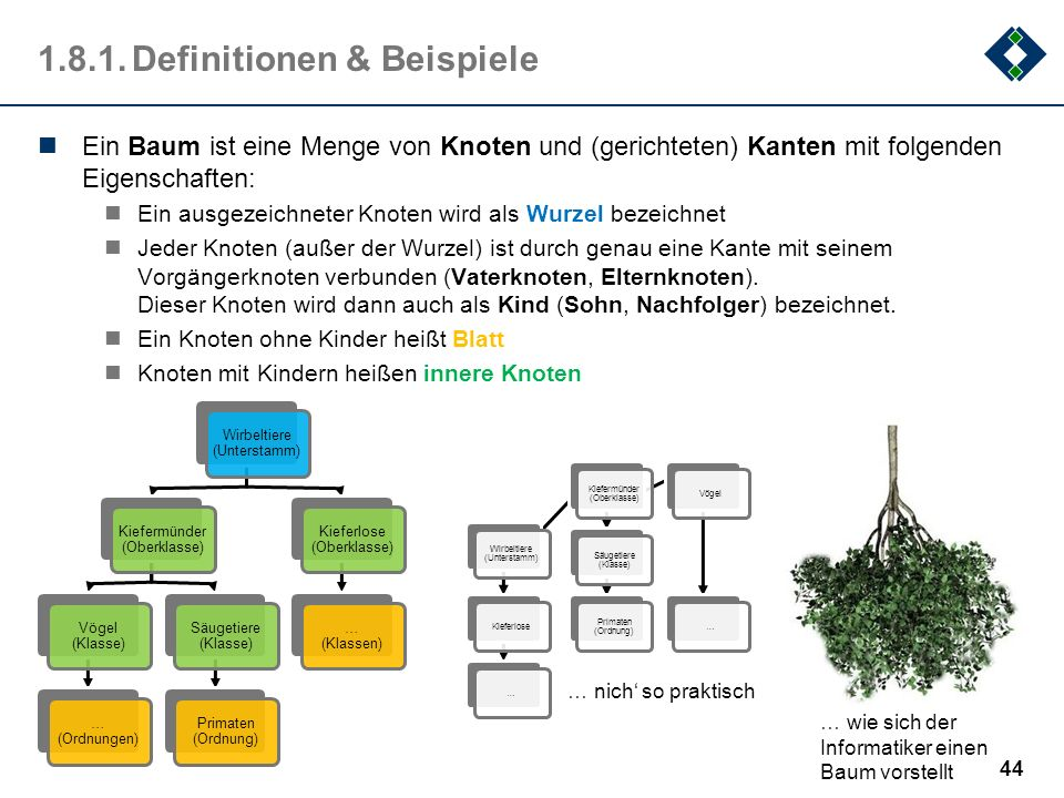1.8.1.Definitionen & Beispiele Ein Baum ist eine Menge von Knoten und (gerichteten) Kanten mit folgenden Eigenschaften: Ein ausgezeichneter Knoten wir