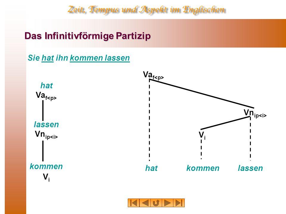 Das Infinitivförmige Partizip Sie hat ihn kommen lassen hat Va f lassen Vn ip kommen ViVi hat Va f kommen ViVi lassen Vn ip