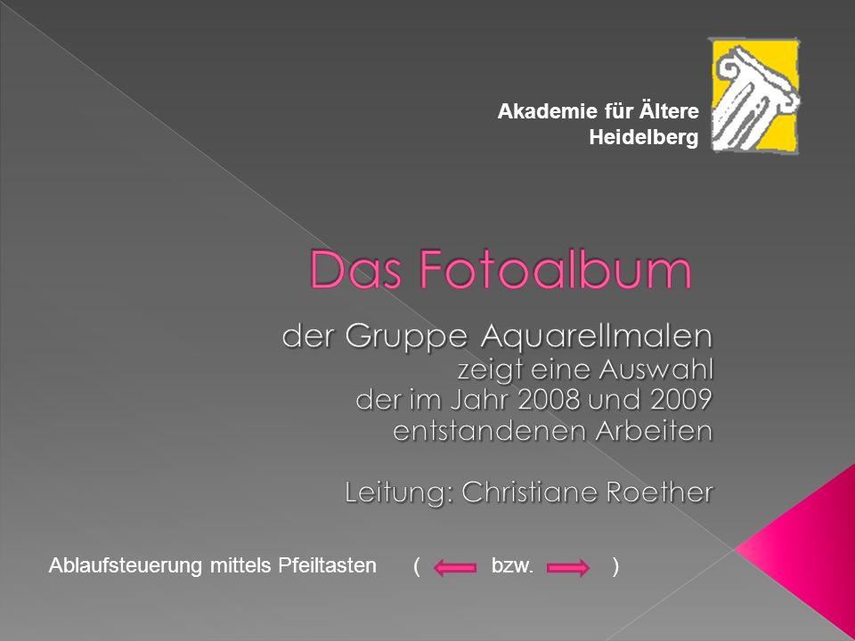 Akademie für Ältere Heidelberg Ablaufsteuerung mittels Pfeiltasten ( bzw. )