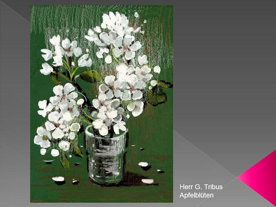Herr G. Tribus Apfelblüten