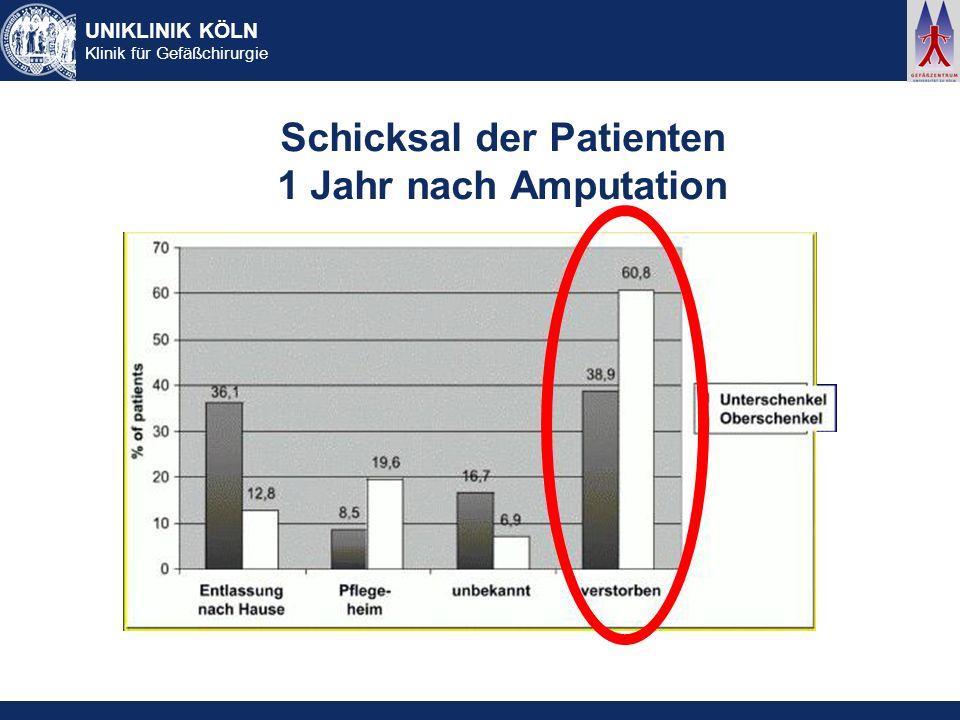 UNIKLINIK KÖLN Klinik für Gefäßchirurgie Schicksal der Patienten 1 Jahr nach Amputation