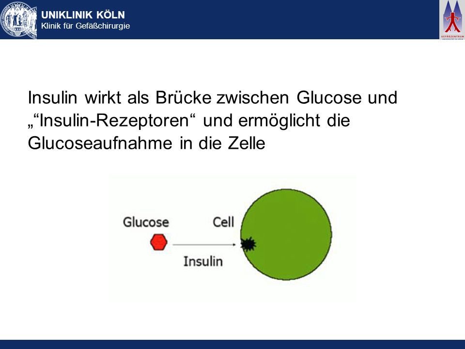 UNIKLINIK KÖLN Klinik für Gefäßchirurgie Insulin wirkt als Brücke zwischen Glucose und Insulin-Rezeptoren und ermöglicht die Glucoseaufnahme in die Ze