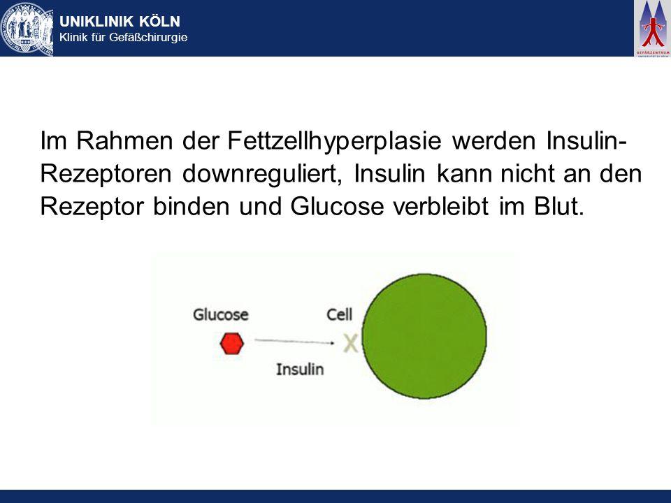 UNIKLINIK KÖLN Klinik für Gefäßchirurgie Im Rahmen der Fettzellhyperplasie werden Insulin- Rezeptoren downreguliert, Insulin kann nicht an den Rezepto