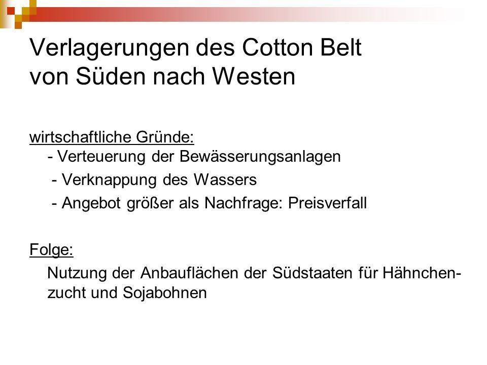 Verlagerungen des Cotton Belt von Süden nach Westen wirtschaftliche Gründe: - Verteuerung der Bewässerungsanlagen - Verknappung des Wassers - Angebot