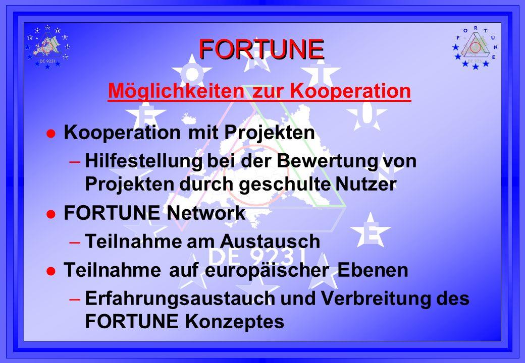 Möglichkeiten zur Kooperation l Kooperation mit Projekten –Hilfestellung bei der Bewertung von Projekten durch geschulte Nutzer l FORTUNE Network –Tei