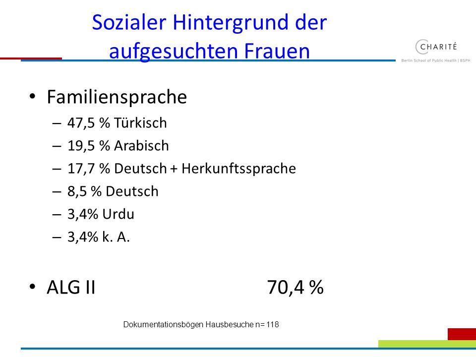Sozialer Hintergrund der aufgesuchten Frauen Familiensprache – 47,5 % Türkisch – 19,5 % Arabisch – 17,7 % Deutsch + Herkunftssprache – 8,5 % Deutsch –