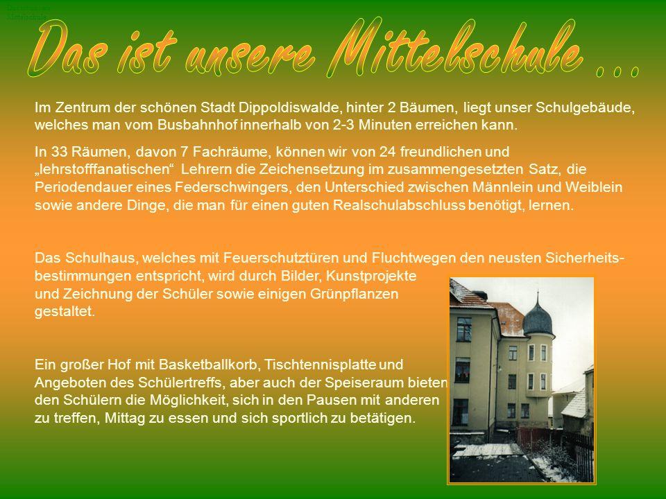 Im Zentrum der schönen Stadt Dippoldiswalde, hinter 2 Bäumen, liegt unser Schulgebäude, welches man vom Busbahnhof innerhalb von 2-3 Minuten erreichen