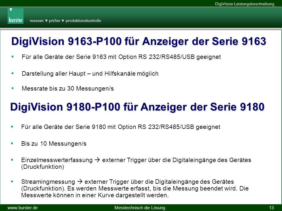 messen prüfen produktionskontrolle Messtechnisch die Lösung.www.burster.de DigiVision Leistungsbeschreibung 14.11.2013 13 DigiVision 9163-P100 für Anz