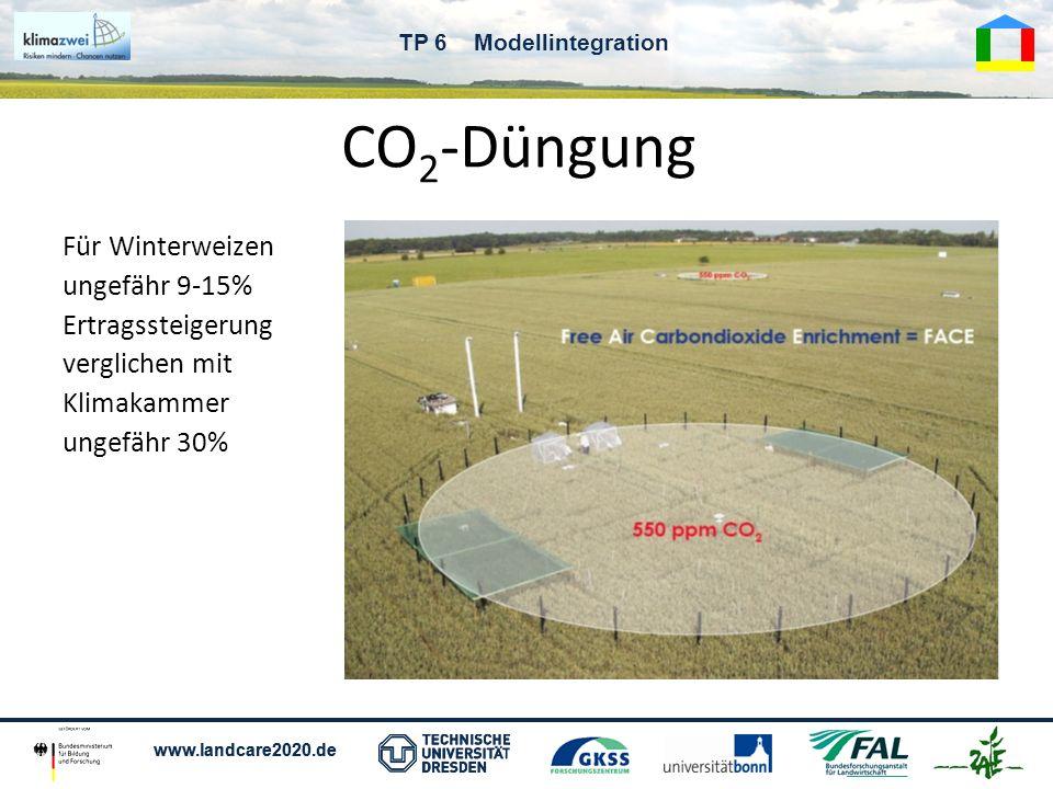 www.landcare2020.de TP 6 Modellintegration CO 2 -Düngung Für Winterweizen ungefähr 9-15% Ertragssteigerung verglichen mit Klimakammer ungefähr 30%
