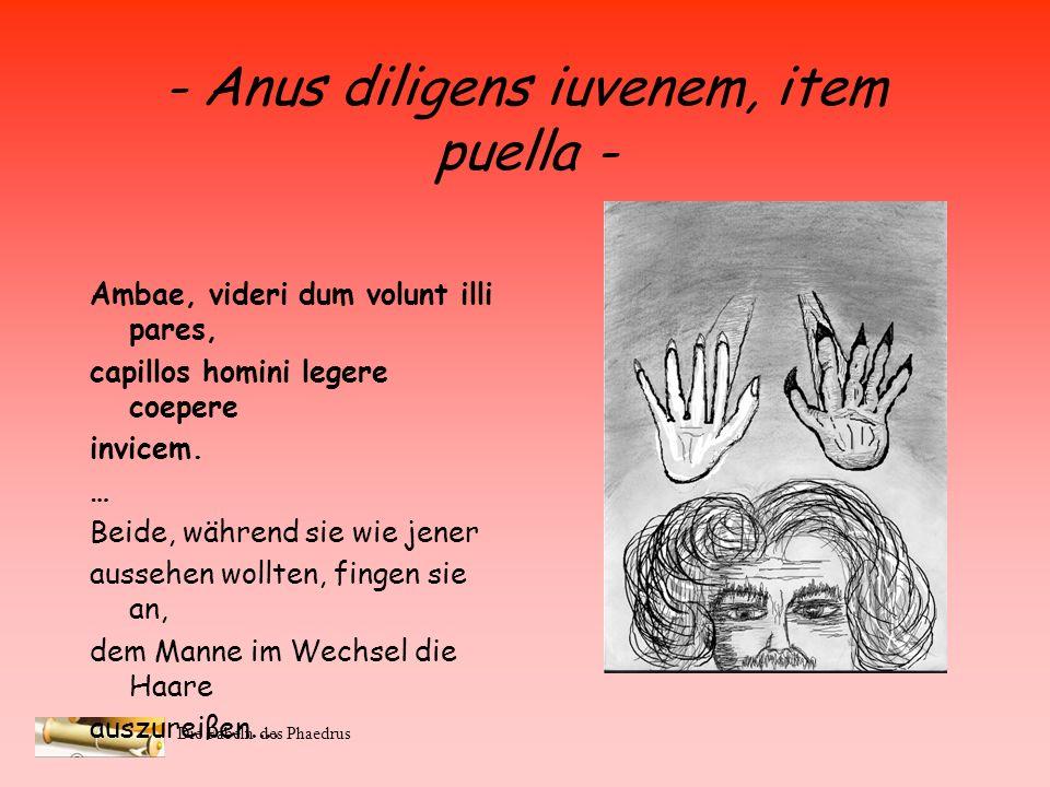 Die Fabeln des Phaedrus - Anus diligens iuvenem, item puella - (Rainer Schülke, Nico Diekhaus, Fabian Emken) A feminis utcumque spoliari viros, ament,
