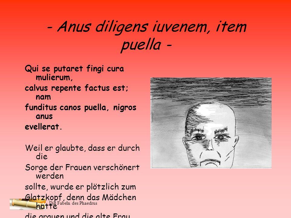 Die Fabeln des Phaedrus - Anus diligens iuvenem, item puella - Ambae, videri dum volunt illi pares, capillos homini legere coepere invicem. … Beide, w