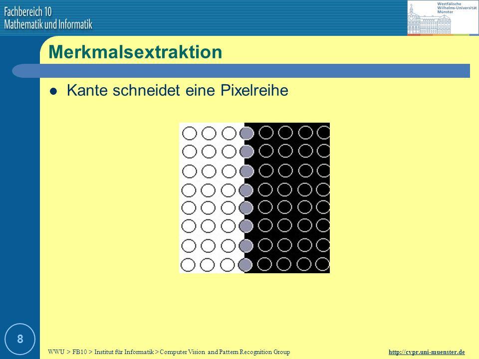 WWU > FB10 > Institut für Informatik > Computer Vision and Pattern Recognition Group http://cvpr.uni-muenster.de 18 Kantenreduktion Non-Maximum Unterdrückung – Problem: Kante wird mehrfach gefunden – Ziel: Nur die kräftigste Kante soll dargestellt werden