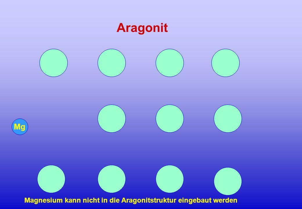 Mg Magnesium kann nicht in die Aragonitstruktur eingebaut werden