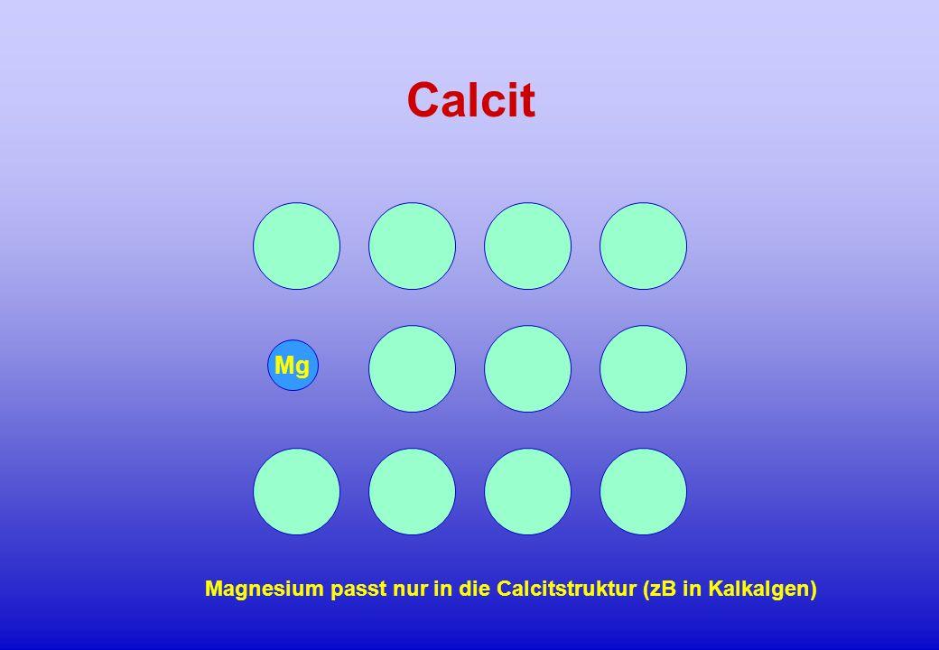 Mg Calcit Magnesium passt nur in die Calcitstruktur (zB in Kalkalgen)