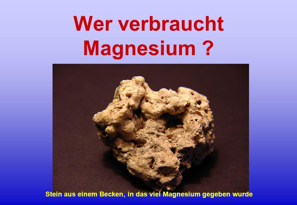 Stein aus einem Becken, in das viel Magnesium gegeben wurde