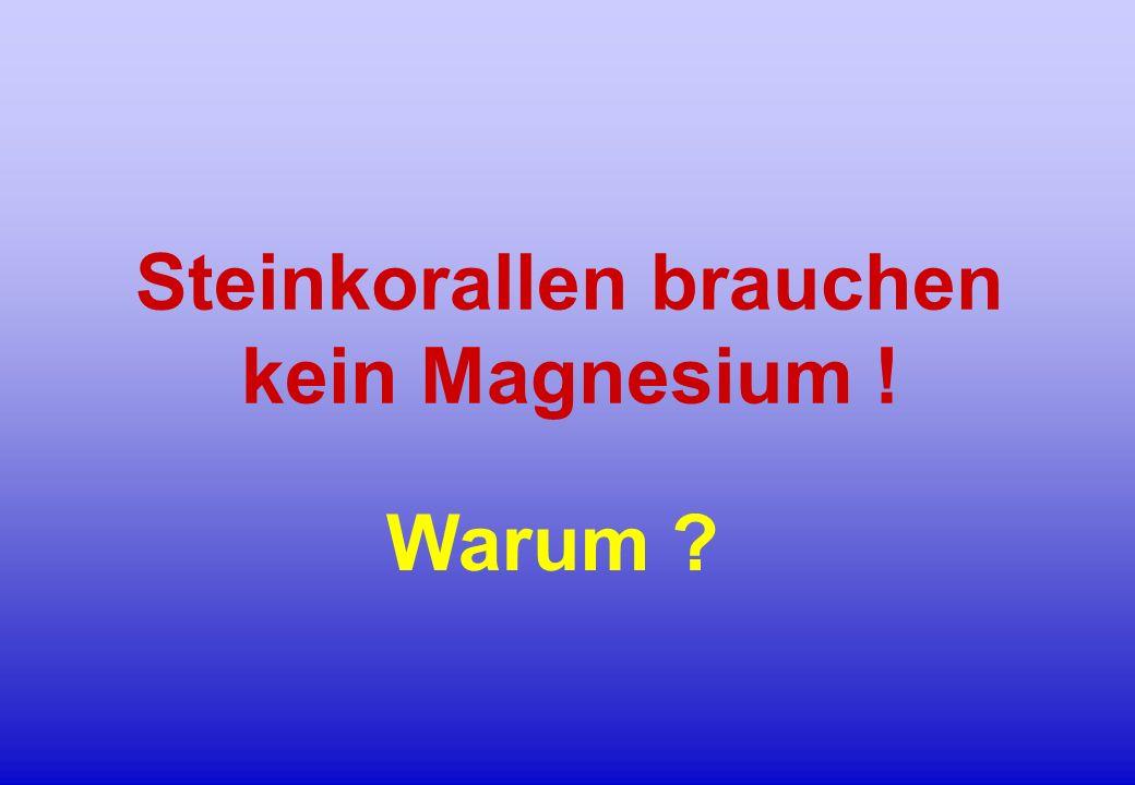Steinkorallen brauchen kein Magnesium ! Warum ?