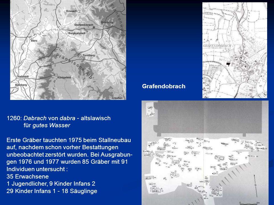 1260: Dabrach von dabra - altslawisch für gutes Wasser Erste Gräber tauchten 1975 beim Stallneubau auf, nachdem schon vorher Bestattungen unbeobachtet