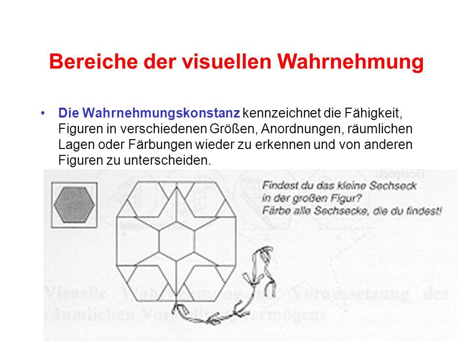 Bereiche der visuellen Wahrnehmung Die Wahrnehmungskonstanz kennzeichnet die Fähigkeit, Figuren in verschiedenen Größen, Anordnungen, räumlichen Lagen