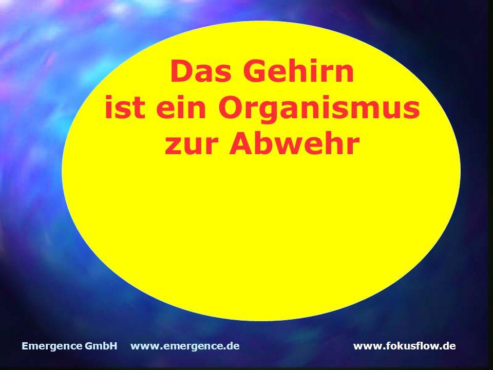 www.fokusflow.deEmergence GmbH www.emergence.de Das Gehirn ist ein Organismus zur Abwehr