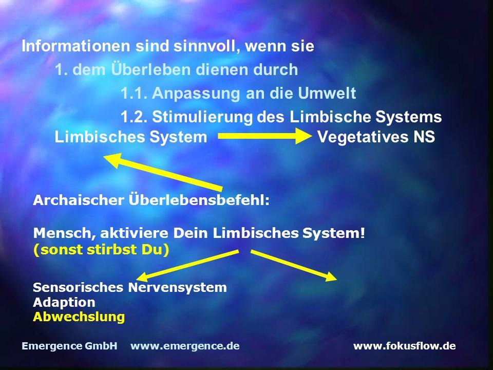 www.fokusflow.deEmergence GmbH www.emergence.de Informationen sind sinnvoll, wenn sie 1.
