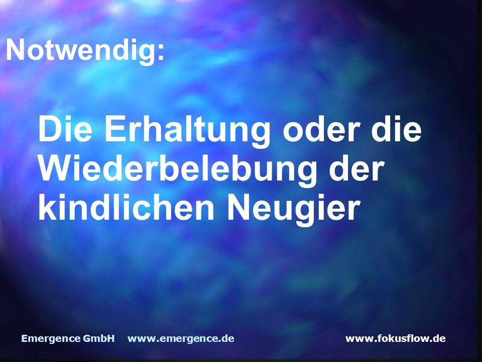 www.fokusflow.deEmergence GmbH www.emergence.de Notwendig: Die Erhaltung oder die Wiederbelebung der kindlichen Neugier