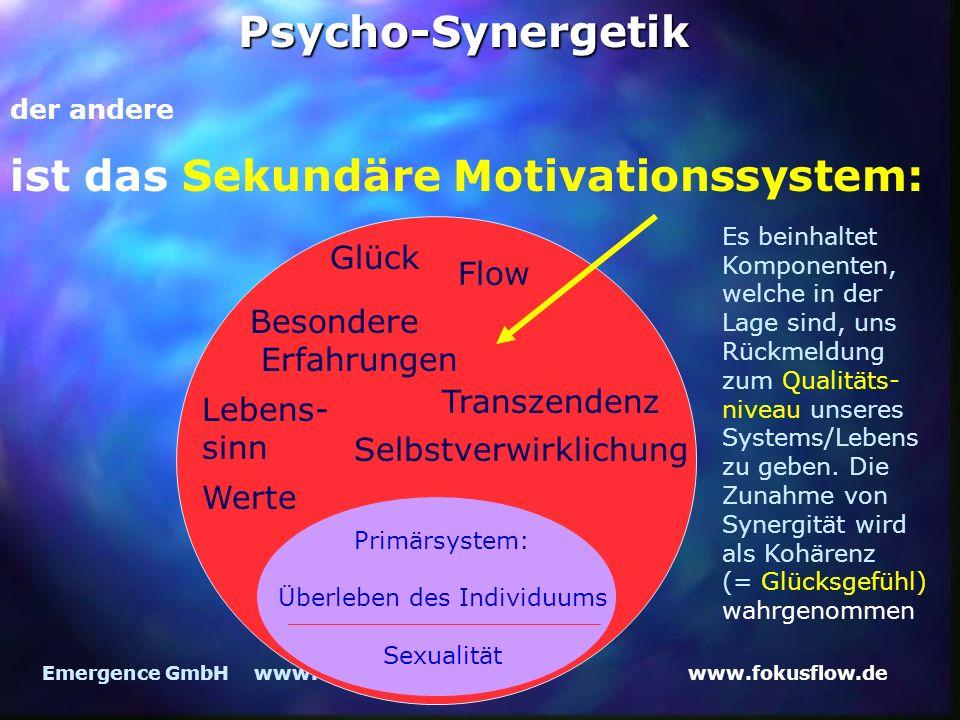 www.fokusflow.deEmergence GmbH www.emergence.dePsycho-Synergetik ist das Sekundäre Motivationssystem: Lebens- sinn Werte Glück Flow Besondere Erfahrun