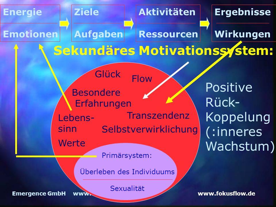 www.fokusflow.deEmergence GmbH www.emergence.de Sekundäres Motivationssystem: Lebens- sinn Werte Glück Flow Besondere Erfahrungen Transzendenz Primärs