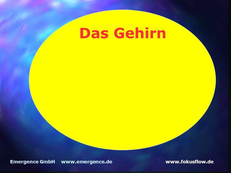 www.fokusflow.deEmergence GmbH www.emergence.de Das Gehirn