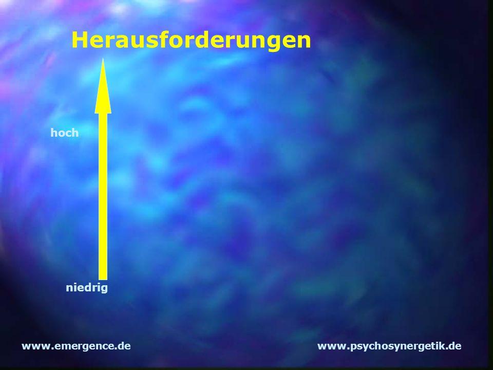 www.emergence.dewww.psychosynergetik.de Herausforderungen hoch niedrig