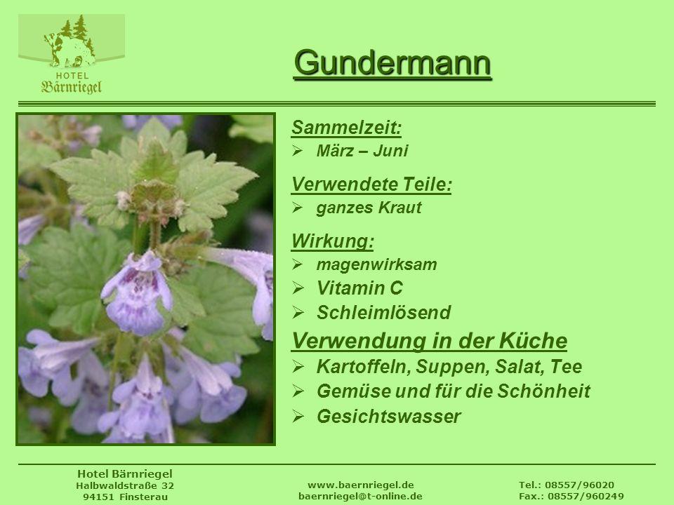 Tel.: 08557/96020 Fax.: 08557/960249 www.baernriegel.de baernriegel@t-online.de Hotel Bärnriegel Halbwaldstraße 32 94151 Finsterau Gundermann Sammelze