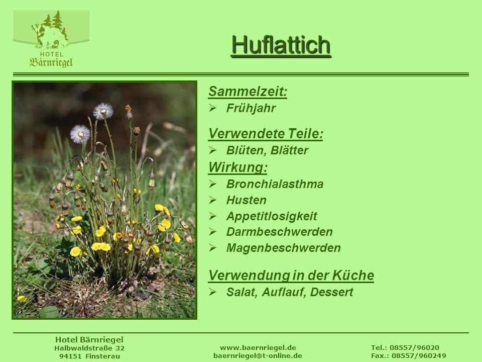 Tel.: 08557/96020 Fax.: 08557/960249 www.baernriegel.de baernriegel@t-online.de Hotel Bärnriegel Halbwaldstraße 32 94151 Finsterau Huflattich Sammelze