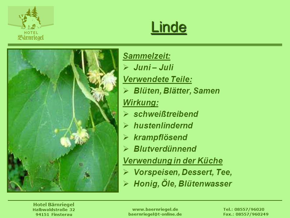 Tel.: 08557/96020 Fax.: 08557/960249 www.baernriegel.de baernriegel@t-online.de Hotel Bärnriegel Halbwaldstraße 32 94151 Finsterau Linde Sammelzeit: J