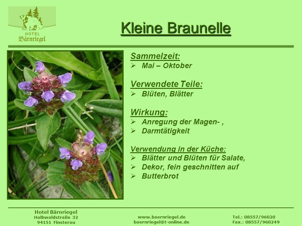Tel.: 08557/96020 Fax.: 08557/960249 www.baernriegel.de baernriegel@t-online.de Hotel Bärnriegel Halbwaldstraße 32 94151 Finsterau Kleine Braunelle Sa
