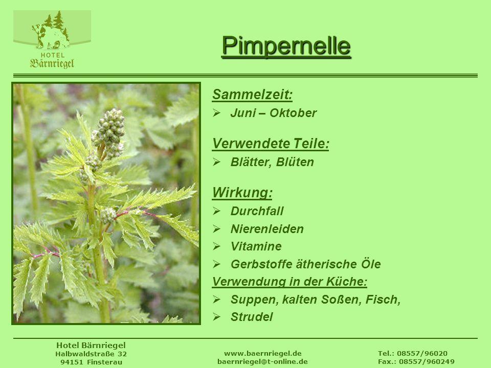 Tel.: 08557/96020 Fax.: 08557/960249 www.baernriegel.de baernriegel@t-online.de Hotel Bärnriegel Halbwaldstraße 32 94151 Finsterau Pimpernelle Sammelz