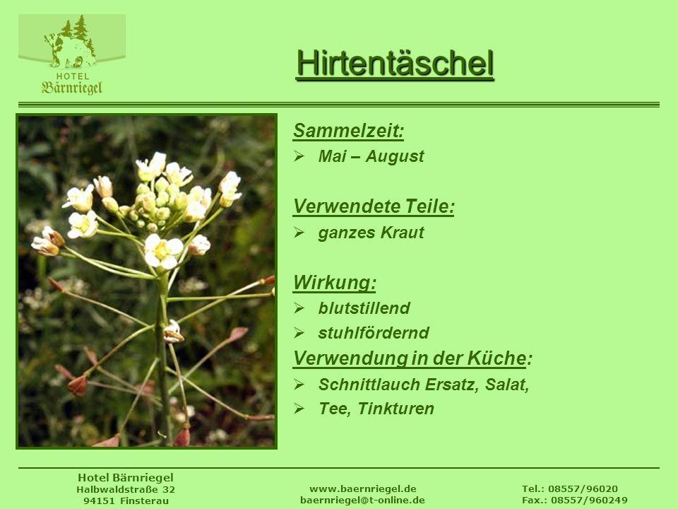 Tel.: 08557/96020 Fax.: 08557/960249 www.baernriegel.de baernriegel@t-online.de Hotel Bärnriegel Halbwaldstraße 32 94151 Finsterau Hirtentäschel Samme