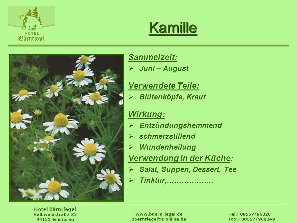 Tel.: 08557/96020 Fax.: 08557/960249 www.baernriegel.de baernriegel@t-online.de Hotel Bärnriegel Halbwaldstraße 32 94151 Finsterau Kamille Sammelzeit: