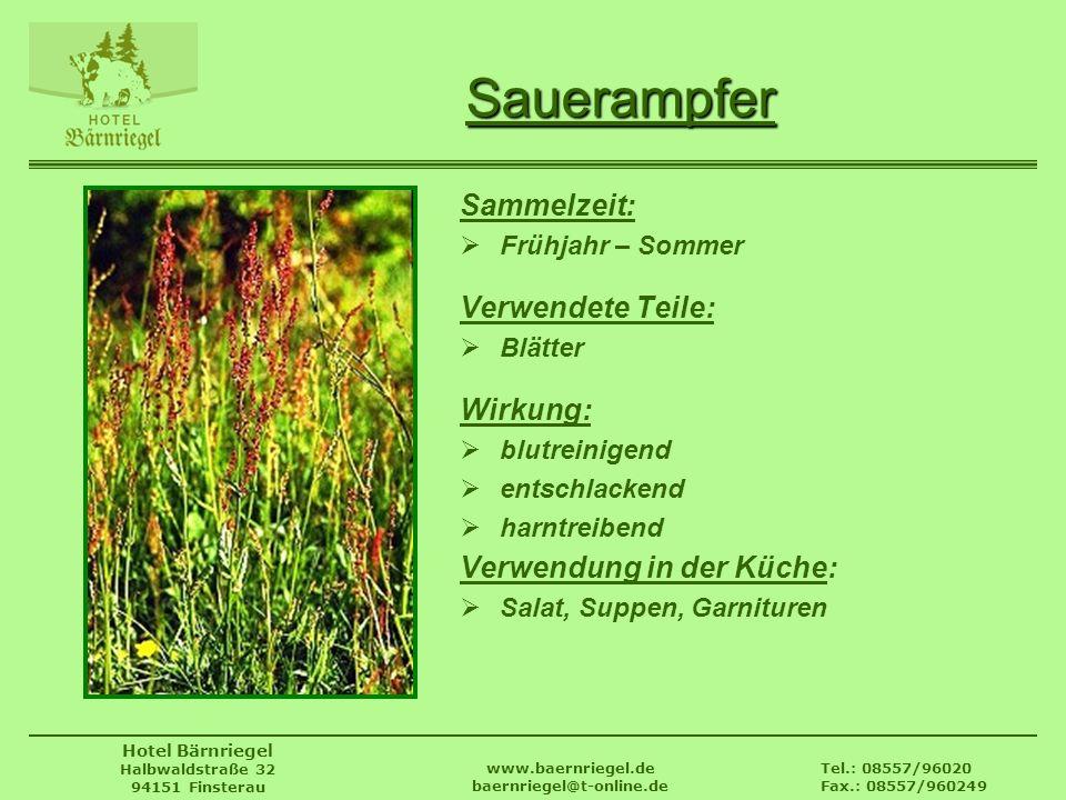 Tel.: 08557/96020 Fax.: 08557/960249 www.baernriegel.de baernriegel@t-online.de Hotel Bärnriegel Halbwaldstraße 32 94151 Finsterau Sauerampfer Sammelz