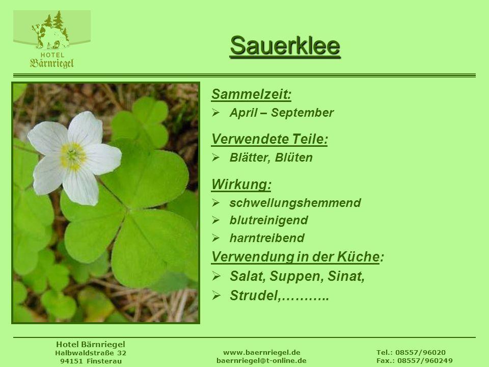 Tel.: 08557/96020 Fax.: 08557/960249 www.baernriegel.de baernriegel@t-online.de Hotel Bärnriegel Halbwaldstraße 32 94151 Finsterau Sauerklee Sammelzei