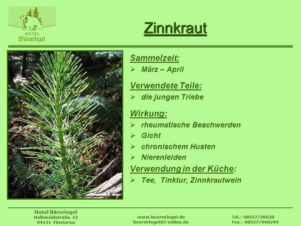 Tel.: 08557/96020 Fax.: 08557/960249 www.baernriegel.de baernriegel@t-online.de Hotel Bärnriegel Halbwaldstraße 32 94151 Finsterau Zinnkraut Sammelzei