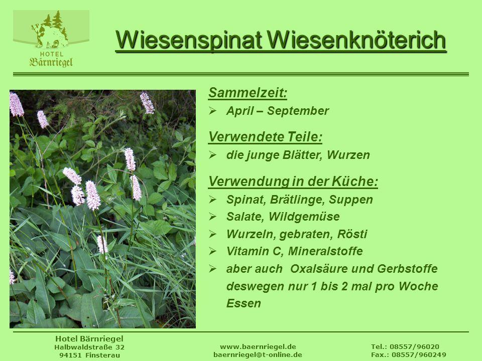 Tel.: 08557/96020 Fax.: 08557/960249 www.baernriegel.de baernriegel@t-online.de Hotel Bärnriegel Halbwaldstraße 32 94151 Finsterau Wiesenspinat Wiesen
