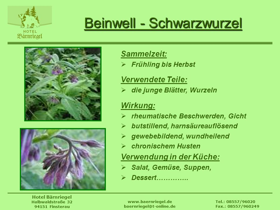 Tel.: 08557/96020 Fax.: 08557/960249 www.baernriegel.de baernriegel@t-online.de Hotel Bärnriegel Halbwaldstraße 32 94151 Finsterau Beinwell - Schwarzw