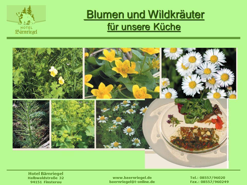 Tel.: 08557/96020 Fax.: 08557/960249 www.baernriegel.de baernriegel@t-online.de Hotel Bärnriegel Halbwaldstraße 32 94151 Finsterau Blumen und Wildkräu