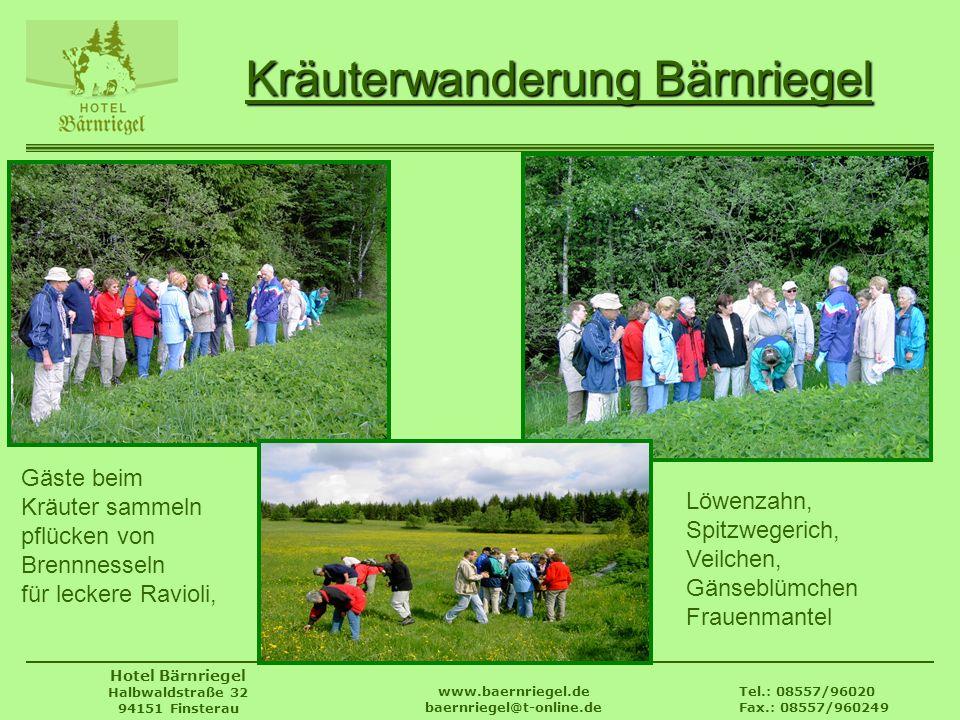 Tel.: 08557/96020 Fax.: 08557/960249 www.baernriegel.de baernriegel@t-online.de Hotel Bärnriegel Halbwaldstraße 32 94151 Finsterau Kräuterwanderung Bä