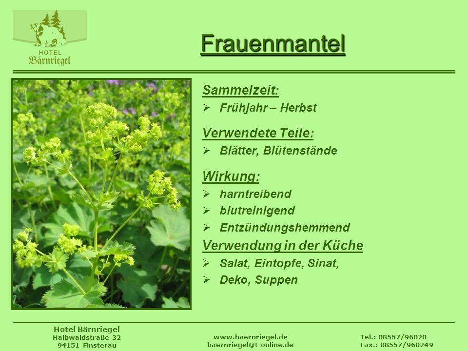 Tel.: 08557/96020 Fax.: 08557/960249 www.baernriegel.de baernriegel@t-online.de Hotel Bärnriegel Halbwaldstraße 32 94151 Finsterau Frauenmantel Sammel