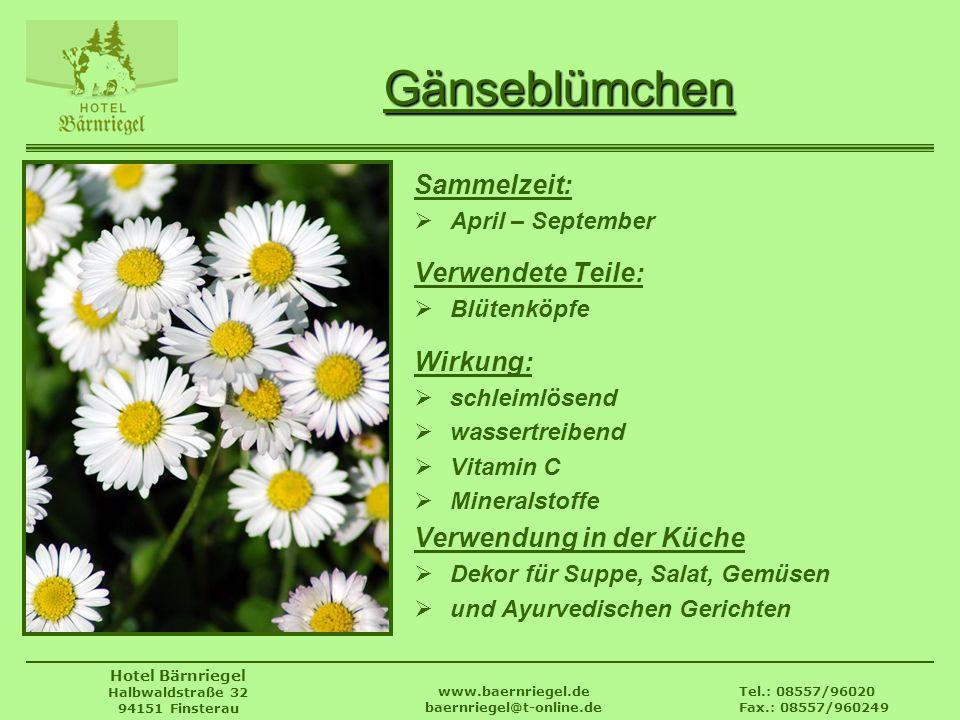 Tel.: 08557/96020 Fax.: 08557/960249 www.baernriegel.de baernriegel@t-online.de Hotel Bärnriegel Halbwaldstraße 32 94151 Finsterau Gänseblümchen Samme