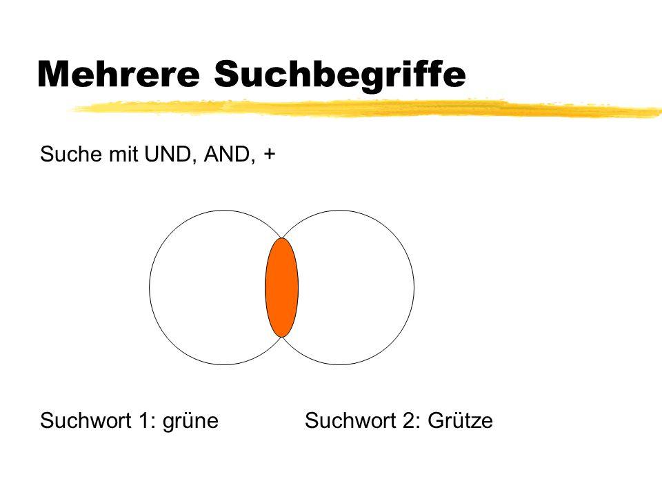Portale Vorteile: qualitätsgeprüft systematisch sortiert Inhalt: Datenbanken einzelne URLs Beispiele: Deutsche Internetbibliothek Autorinnen und Autoren DBIS