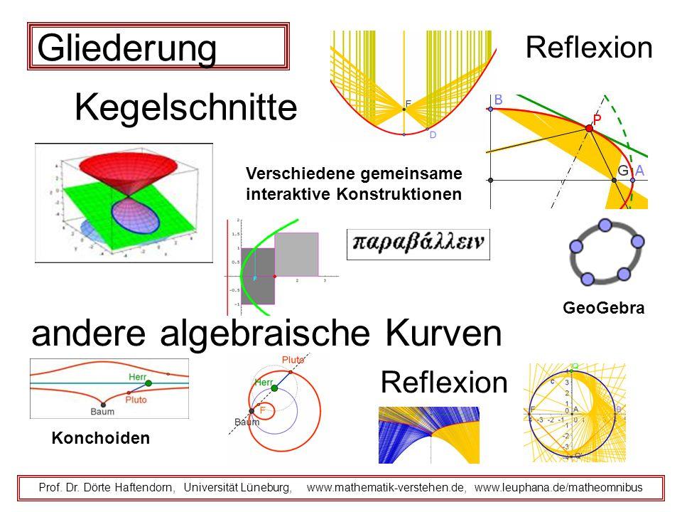 Gliederung Reflexion Prof. Dr. Dörte Haftendorn, Universität Lüneburg, www.mathematik-verstehen.de, www.leuphana.de/matheomnibus andere algebraische K