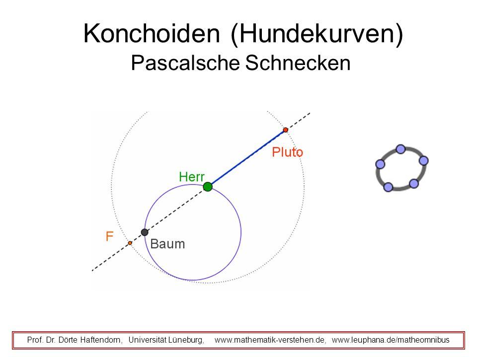 Konchoiden (Hundekurven) Prof. Dr. Dörte Haftendorn, Universität Lüneburg, www.mathematik-verstehen.de, www.leuphana.de/matheomnibus Pascalsche Schnec