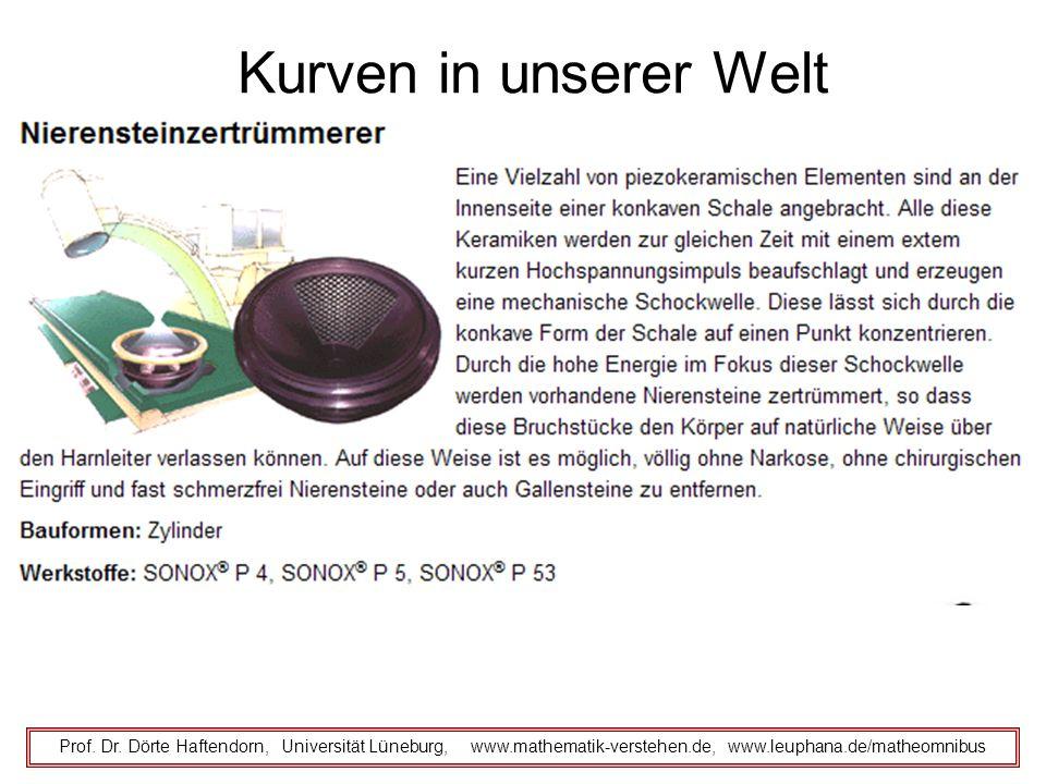 Kurven in unserer Welt Prof. Dr. Dörte Haftendorn, Universität Lüneburg, www.mathematik-verstehen.de, www.leuphana.de/matheomnibus