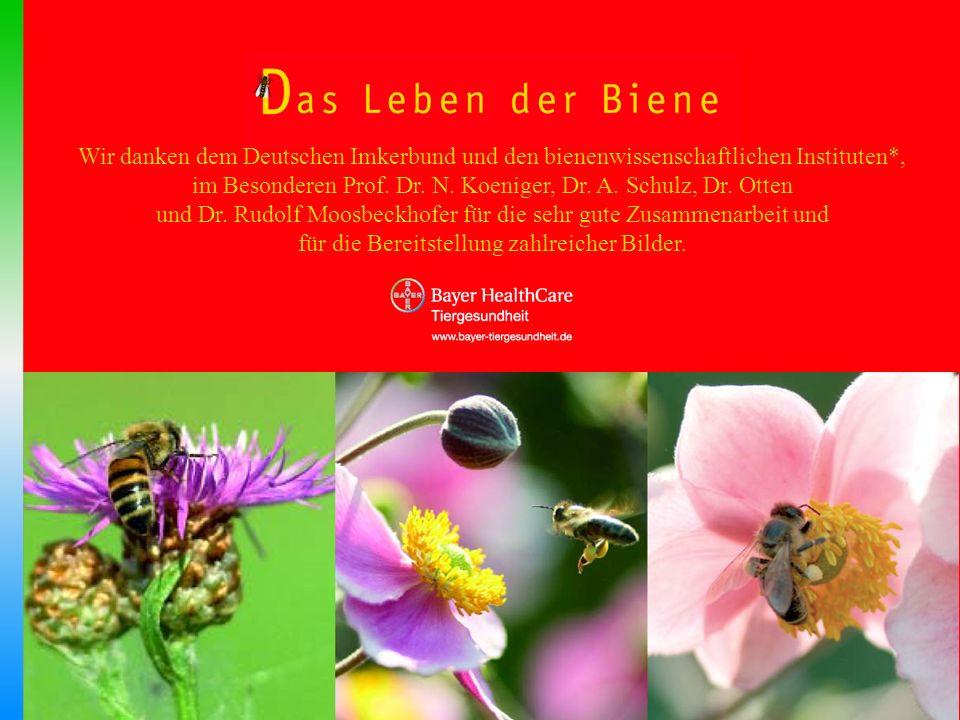 Wir danken dem Deutschen Imkerbund und den bienenwissenschaftlichen Instituten*, im Besonderen Prof. Dr. N. Koeniger, Dr. A. Schulz, Dr. Otten und Dr.